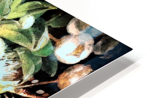 Touched by Nature HD Sublimation Metal print
