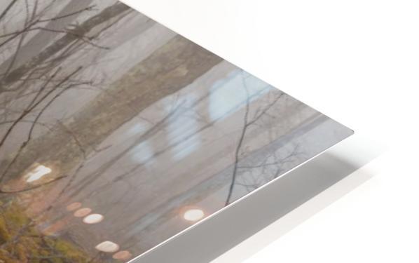 Treeline HD Sublimation Metal print