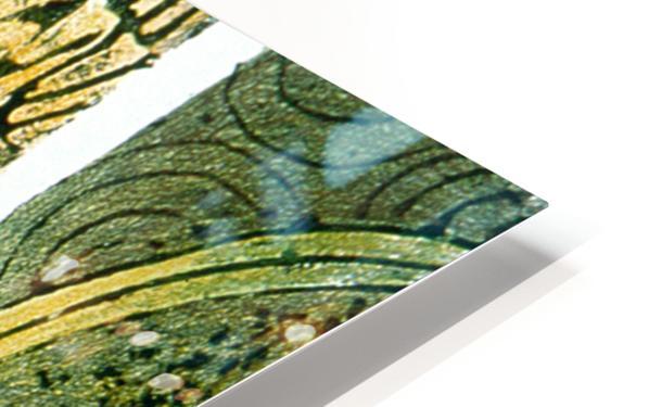 Secret mortel HD Sublimation Metal print