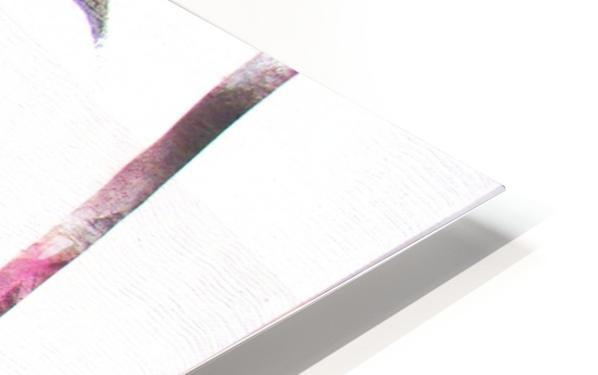noir_blanc_rose Impression de sublimation métal HD