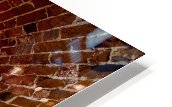 Southsea Castle Tunnels HD Sublimation Metal print