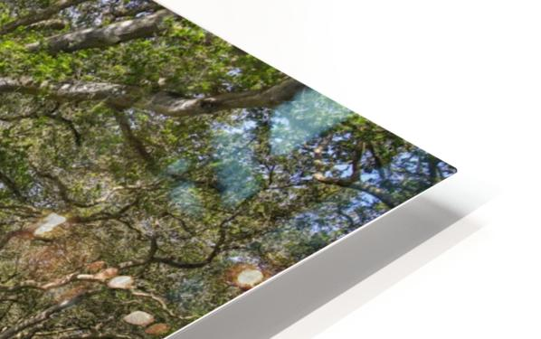 By the river HD Sublimation Metal print