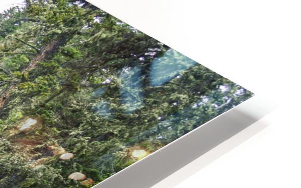 Big TImber Creek HD Sublimation Metal print