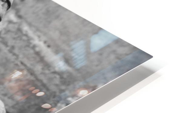 Musicians HD Sublimation Metal print