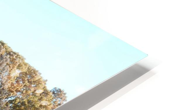 Pole Barn in Fall HD Sublimation Metal print