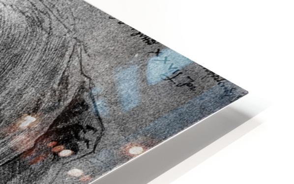 Agnes Durer in Dutch Tracht HD Sublimation Metal print