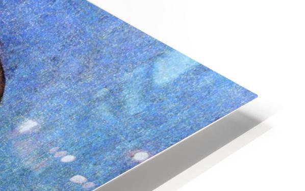 Jacob Fugger HD Sublimation Metal print