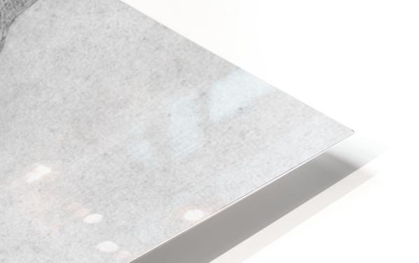 Apollo HD Sublimation Metal print