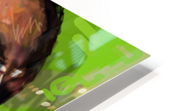 wizzz HD Sublimation Metal print