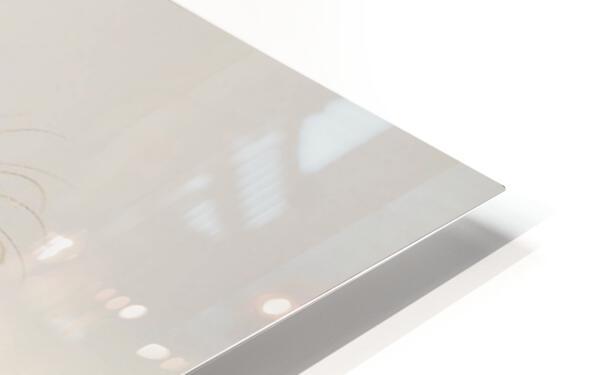 LRM_EXPORT_24334493503053_20191009_150407586 HD Sublimation Metal print