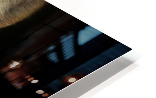 LRM_EXPORT_24316299465035_20191009_150349392 HD Sublimation Metal print