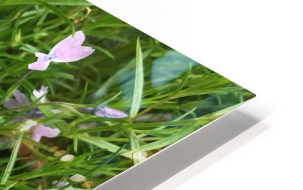 Purple Wild flowers HD Sublimation Metal print