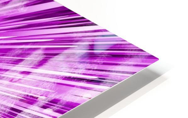 Leopard pop 3 HD Sublimation Metal print