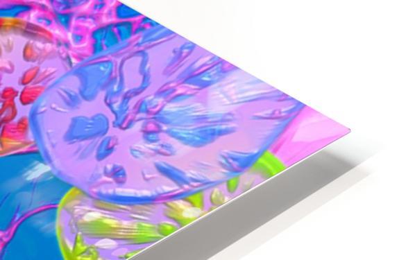 672 HD Sublimation Metal print