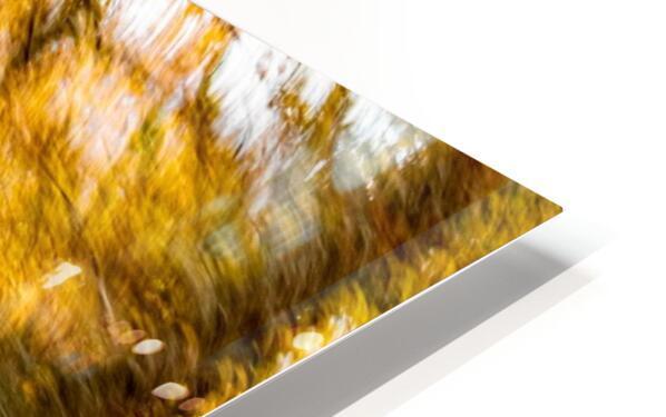 Foliage Blur HD Sublimation Metal print