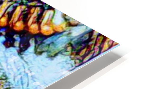 zipper eye HD Sublimation Metal print