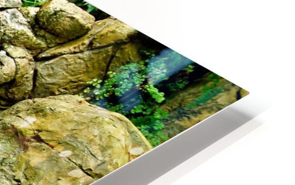 LIttle Hong Kong Park Waterfall HD Sublimation Metal print
