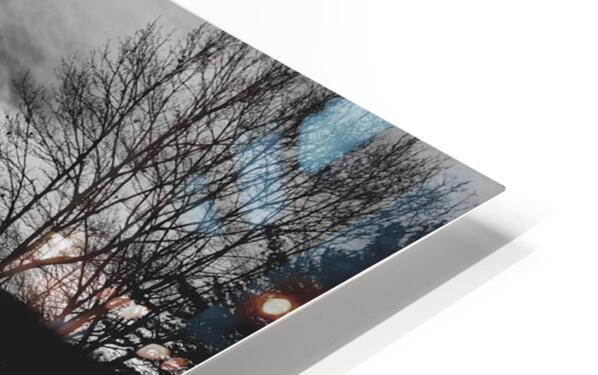 Empty Bench HD Sublimation Metal print