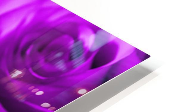 Rose purple  HD Sublimation Metal print