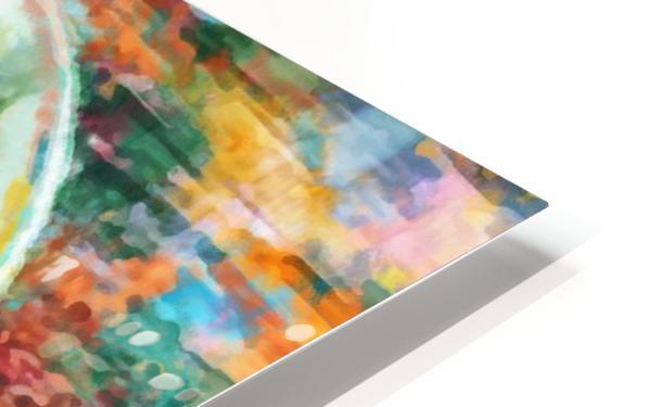 images   2019 11 12T202430.211_dap HD Sublimation Metal print