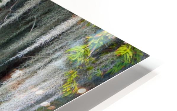 Spot Me Out HD Sublimation Metal print
