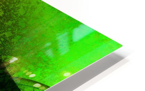 Frazla by Jean-François Dupuis  HD Sublimation Metal print