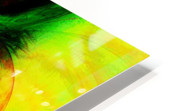 Circusia  HD Sublimation Metal print