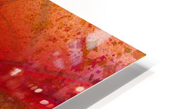 Orion by Jean-François Dupuis HD Sublimation Metal print