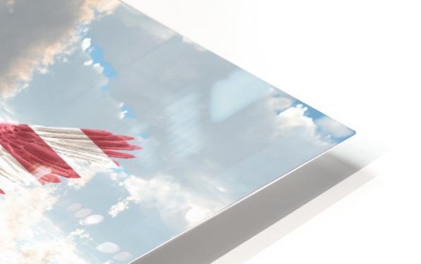 Savior HD Sublimation Metal print