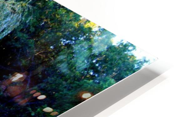 Reflections of a Monet Garden HD Sublimation Metal print