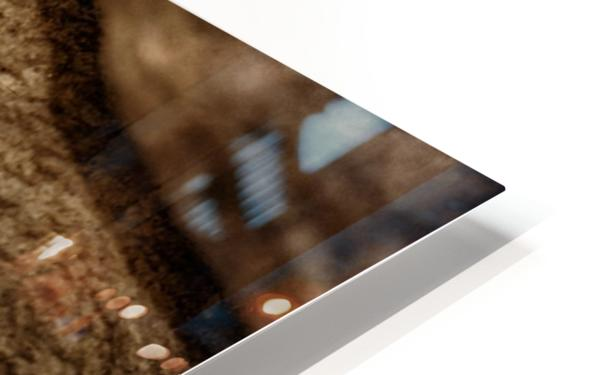 The Meerkat Twins HD Sublimation Metal print