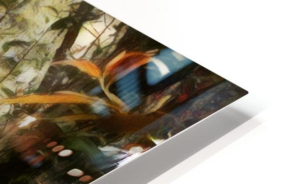 Into the Woods HD Sublimation Metal print