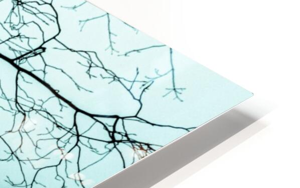 Branchlets HD Sublimation Metal print