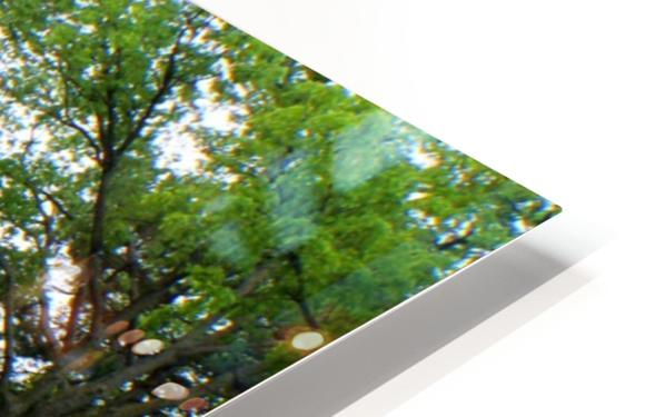 Tall Grass Prairie Reserve HD Sublimation Metal print