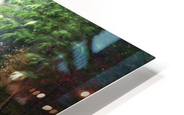 Forest Stream HD Sublimation Metal print