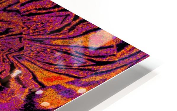 Velvet Spring Flower HD Sublimation Metal print