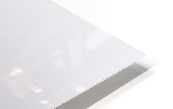 Hoar Frost HD Sublimation Metal print
