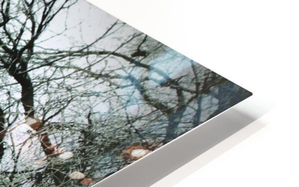 Abandoned Homestead HD Sublimation Metal print