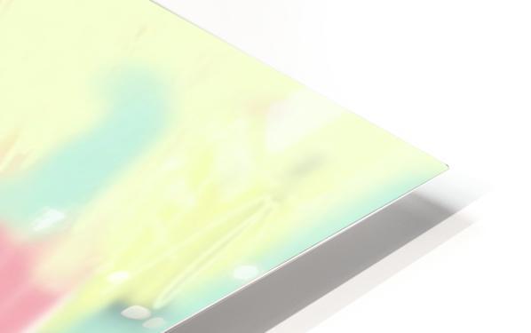 Image0423 (7) HD Sublimation Metal print