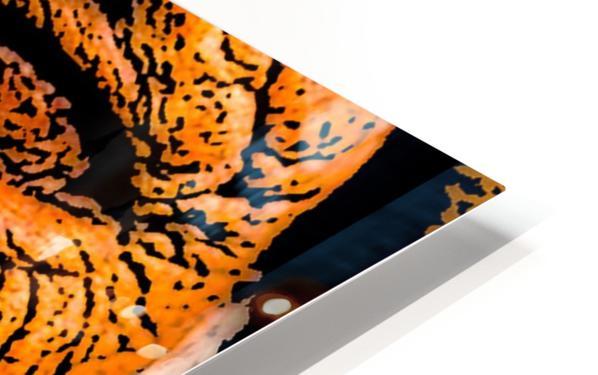 Squint HD Sublimation Metal print