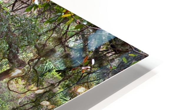 Stream  HD Sublimation Metal print