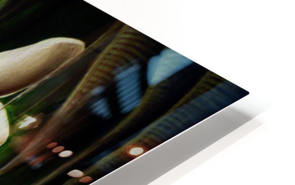 White Rabbit HD Sublimation Metal print
