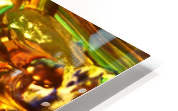 Exaltation Acoustic Version HD Sublimation Metal print