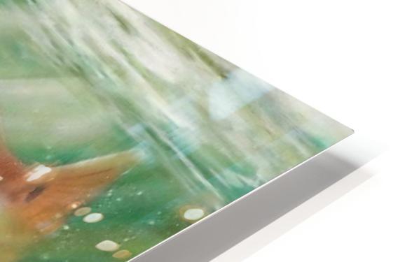 redfish HD Sublimation Metal print