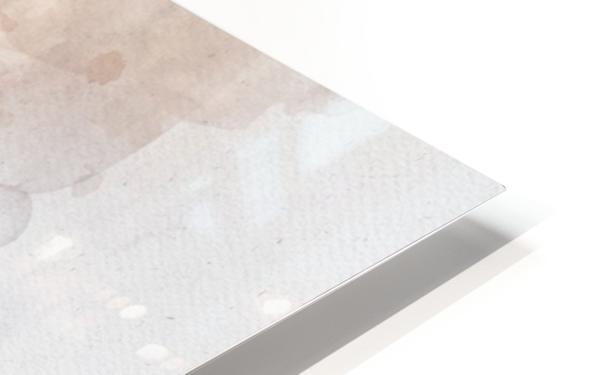 Donald trump HD Sublimation Metal print
