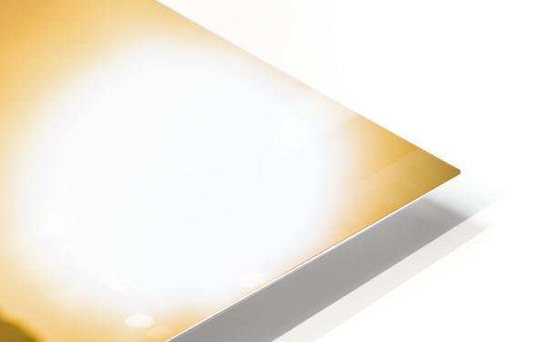 Glistening Waters Impression de sublimation métal HD
