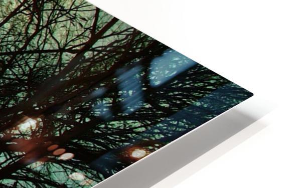 2004_0102Dallas0015 HD Sublimation Metal print