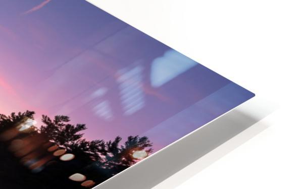 Magenta Magic HD Sublimation Metal print