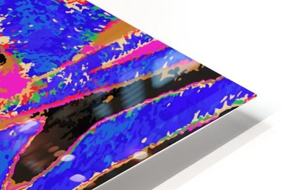 Zebra Eye HD Sublimation Metal print