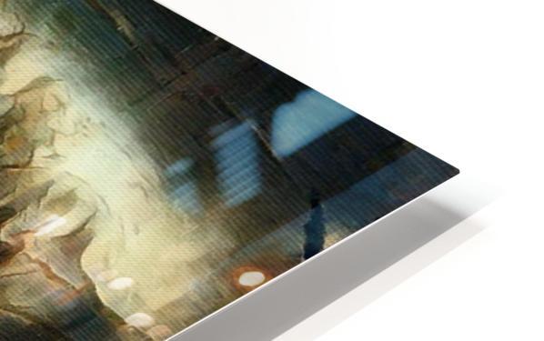 Entwine HD Sublimation Metal print